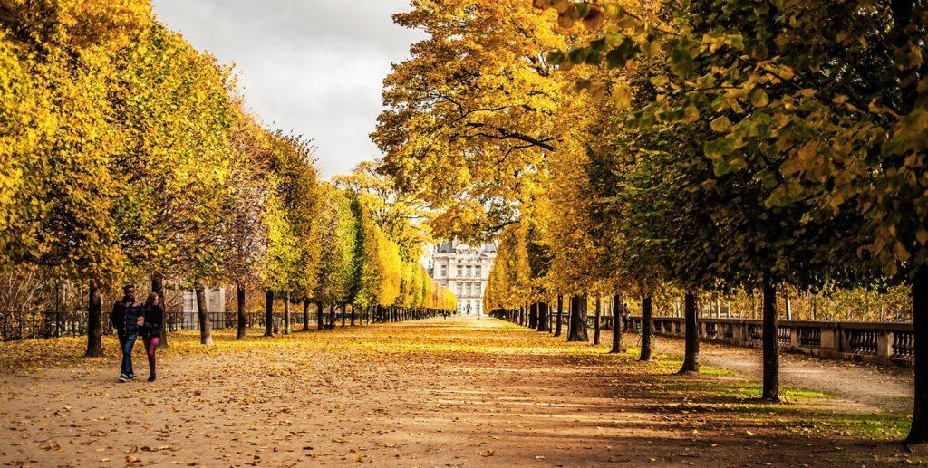 Прогулки по осеннему Парижу